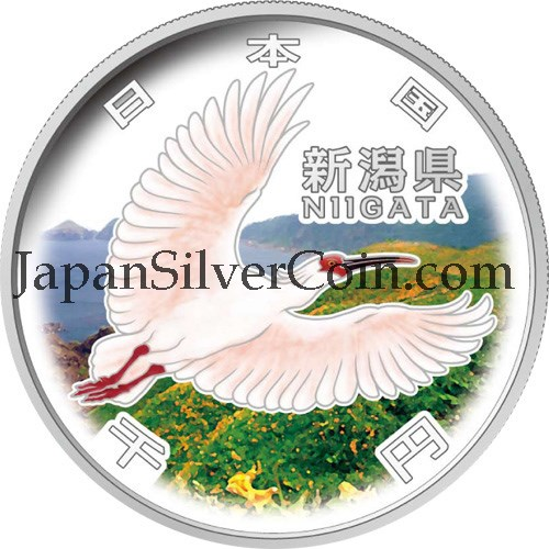 2009 Silver